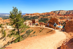 Queen's Garden Trail - Bryce Canyon National Park (mikerhicks) Tags: travel arizona people usa southwest nature geotagged outdoors photography utah spring unitedstates desert hiking adventure event backpacking bryce brycecanyon marblecanyon brycecanyonnationalpark queensgardentrail onemile geo:country=unitedstates geo:state=utah camera:make=canon exif:make=canon tokinaatxprosd1116f28ifdx exif:lens=1116mm exif:aperture=28 geo:city=bryce exif:isospeed=100 exif:focallength=16mm canoneos7dmkii camera:model=canoneos7dmarkii exif:model=canoneos7dmarkii geo:lat=3762816333 geo:lon=11216280500 geo:lat=37628163333333 geo:lon=112162805 geo:location=brycecanyon
