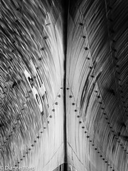 USS Wisconsin (BB-64) (Tewmom) Tags: blackandwhite abstract texture geometric monochrome wisconsin virginia pattern norfolk symmetry 64 battleship hull bb64 battleshipwisconsin