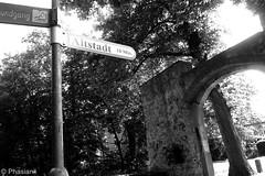 Altstadt (Phasianii) Tags: olympus em10 phasianii burg vischering wegweiser altstadt mono bw sw ldinghausenw westfalen germany omd