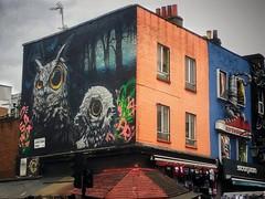 #camdentown #camden #london #camdenmarket #streetmarket #streetart #graffiti #owls #mercado #londres #artecallejero #picoftheday #fotodeldia (lunatica_89) Tags: streetart london graffiti camden camdenmarket mercado londres camdentown owls streetmarket picoftheday artecallejero fotodeldia
