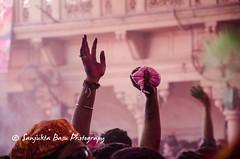 Barsana Nandgaon Lathmar Holi Low res (10 of 136) (Sanjukta Basu) Tags: holi festivalofcolour india lathmarholi barsana nandgaon radhakrishna colours