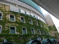 P1030522 (Nog-Z) Tags: stadium tigers hanshin hyogo koshien