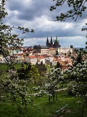 Spring in Prague... (toncheetah) Tags: castle spring prague praha