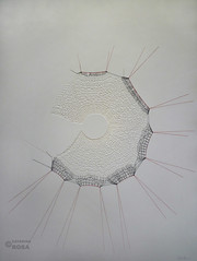 Rosace (Catarina L Rosa) Tags: abstract paper tricot knitting drawing contemporaryart sewing fil dessin draw papier desenho sewn threads artiste coudre textil cousu catarinarosa