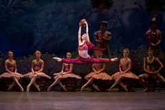 Cast Change: Roberta Marquez to dance in La Bayadère on 5 April