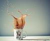 http://www.flickr.com/photos/dongga/5605563602/ (流明の河川) Tags: coffee drops kaffee splash spritzer edhardy frozenmovment