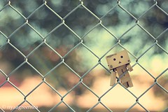 climber danbo (nyaagreentea) Tags: trees cute leaves canon fence bokeh kawaii danbo 600d revoltech
