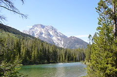 EEUU -Wyoming - Grand Teton NP (eduiturri) Tags: wyoming grandtetonnationalpark eeuu