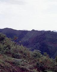 SierraSantamarta013