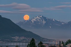 Midnight moon (Per Ivar Somby) Tags: moon mountains night harvestmoon natt fjell mne troms fullmne tromsbrua