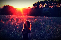 Shining (alina.) Tags: light sunset orange sun girl field self canon hair 50mm golden evening bokeh hour goldenhour 50mmf14 canon550d canoneos550d alinacerny