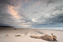 Windswept (Nick Twyford) Tags: sunset sea newzealand sky seascape colour beach clouds coast log sand nikon surf day waves cloudy wideangle auckland driftwood northisland sunsetbeach westcoast portwaikato leefilters 1024mm d7000 lee06gndhard lee12gndhard