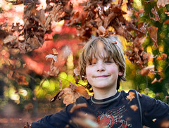 Happy Thanksgiving (Christopher J. Morley) Tags: thanksgiving family autumn boy red portrait holiday playing green leaves yellow vancouver fun nikon play bokeh son d600