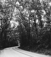 the road behind (almostsummersky) Tags: statepark road street travel trees summer nature lines forest us blackwhite unitedstates outdoor pavement branches southcarolina monochromatic winding curve tablerock pickens tablerockstatepark