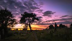 Sunset (Rich Walker75) Tags: uk sunset england southwest cemetery landscape plymouth devon