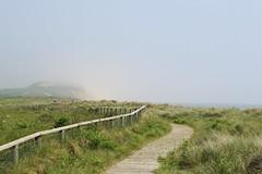 Mist over the Head (Jim-Paterson) Tags: mist june fence landscape path dunes hill dorset 2016 hengistburyhead