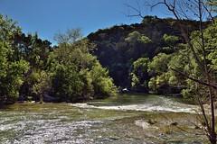 Saying Goodbye to Sunshine... (thor_mark ) Tags: trees nature creek austin stream unitedstates tx blueskies hillside bartoncreek bartoncreekgreenbelt lookingse project365 colorefexpro nikond800e capturenx2edited hillsideoftrees kirkandallvinswall sayinggoodbyetosunshine