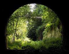 Greenery (Jason_Hood) Tags: disused abandoned railway railroad southstaffordshireline southstaffordshirerailway dudleytunnel tunnel dudley