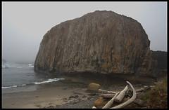 Monolith #2; Seal Rock, Oregon (hamsiksa) Tags: ocean beach fog oregon coast rocks pacific driftwood shore pacificnorthwest oregoncoast monoliths seastack