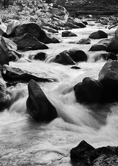 Go with the flow (TEO DE THUONG) Tags: park trees blackandwhite bw water river rocks branch sony ngc maryland soe twop simplysuperb a6300 artofimages