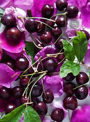 Cherry & wild rose petals lemonade (foodpornveganstyle) Tags: wild food fruits rose petals vegan cherries drink lemonade vegetarian foodphotography róża czereśnie dzika kompot foodstyling wiśnie płatki foodpornveganstyle