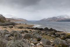 Loch Etive Loop (jason-l) Tags: cycling scotland highlands glen loch salsa pugsley surly mukluk etive fatbike