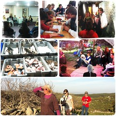 Dt.-Israelischer Jugendaustausch Part VII: Zeitzeuginnengespräch & Gruppenarbeit im Ghettofighter-Museum, Kurzbesuch in Akko, Übernachtung in einem ökologischen Dorf in den Bergen.