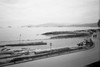 the seawall (bluechameleon) Tags: people blur film beach 35mm movement scan pinhole seawall englishbay ilford bluechameleon utatafeature sharonwish bluechameleonphotography