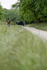 petite balade (beaglou prod) Tags: dog chien paris france beagle canon vincennes fleche beaglou beaglouprod delarosedesgatines