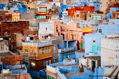 Landscape view. Jodhpur, Rajasthan, India (achel cabonell) Tags: old city travel blue houses urban india streets landscape town asia colours view rooftops terrace top indian roofs viajes rajasthan jodhpur rajasthani travelphotography documentaryphotography fotografiadocumental fotografiadeviajes rachelcarbonell
