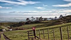 stormy tapuae (dcysurfer / Dave Young) Tags: ocean trees newzealand storm clouds wind farm spray gales tasmansea 169 efs1785mmf456isusm paddock omata canoneos50d tapuae sugarloafislands dcysurfer ngmotu