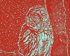Mid Century Modern Barred Owl #Draw365.300 (JuliaForsythArt) Tags: sleeping red snow color bird art colors face modern ink print mod aqua artist fifties drawing sleep snowstorm beak feathers drawings baren printing owl printmaking linocut block 50s blockprint linoleum printed lino hoot owls woodcut woodblock barred reliefprint barredowl inked midcentury strix whoo handprinted linoprint blockprinting varia strixvaria linoleumcut linoleumprint handpulled redink woodcutprint reliefprintmaking reliefprinting snowfalling linoblock sleepingowl cadmiumred owldrawing linoleumprinting owlart linocutprint blockprintingink linocutprinting linoleumprintmaking linocutprintmaking cadmiumredlight juliaforsythart feathersowls owllinocut