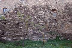 Castell de Vallfogona de Riucorb (Monestirs Puntcat) Tags: conca castell monestir barber comanda vallfogona riucorb