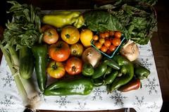 stoneledge farms CSA Week eleven CLS_5943 (smith_cl9) Tags: nikon cucumber tomatoes crop basil week farms nikkor eleven vr sensor cherrytomatoes csa dx sweetpeppers f3556g stoneledge apsc wallawallaonions 18105mm brightlightsswisschard d7k d7000 italiancucumber jalapenopepper summerleeks
