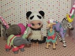 73/365, Bao Bao and the party animals