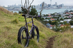 Mountain / Bike (ibikenz) Tags: city bike bicycle volcano downtown mountainbike auckland singlespeed pugsley mountainbiking surly devonport mtvictoria singletrack waitemataharbour fatbike rx100 sonycybershotdscrx100