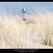 Leuchtturm - Ostsee