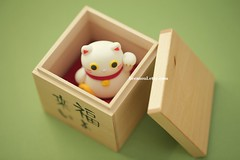 handmade lucky cat ,handmade clay dolls, handmade home deco (charles fukuyama) Tags: cat miniature kitten kitty woodworking sculpted handmadedoll lovecat woodenbox japanstyle catdoll claydoll  kikuike