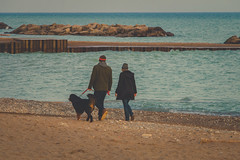 Along The Shore (A Great Capture) Tags: sunset people dog brown toronto ontario canada beach water walking eos spring sand couple photographer walk canadian beaches woodbine springtime on 2016 ald ash2276 ashleylduffus
