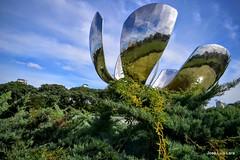 Extraa floracin (pepelara56) Tags: verde metal flor escultura acero plateado