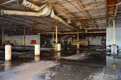 DSC_3251 (hellotristan) Tags: cambridge canada abandoned nikon factory adventure explore nikonphotography abandonedontario nikond7000