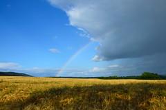 Couleur et caprice du ciel (Croc'odile67) Tags: sky cloud nature landscape nikon ciel nuage paysage arcenciel d3200 afsdx18105