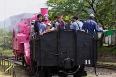 Pink SL at Wakasa Railway (25) (double-h) Tags: sl tottori jnr steamlocomotive c12   eos6d   pinksl wakasarailway  c12 ef100400mmf4556lisiiusm c12167 wakasastation classc12 c12 sl