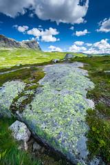 (MFB_2010) Tags: landscape ilovenature polarizer naturesbest haukeli dyreskar