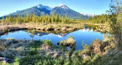 Vermillion Lakes, Banff National Park, Alberta, Canada psi(5)36-44 (photos by Bob V) Tags: mountains rockies banff rockymountains mountainlake vermillion banffnationalpark canadianrockies vermillionlakes banffalberta vermillionlake banffpark banffalbertacanada