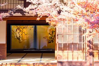 風神雷神図と紅葉 - 建仁寺 / Kennin-ji Temple