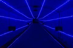 Desorientation tunnel (Machiel Taal) Tags: thegalaxy
