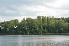 Otomin Lake, Kaszuby (Pomorze), Poland (LeszekZadlo) Tags: blue trees sky naturaleza lake green nature water clouds landscape natureza poland polska paisaje polen landschaft polonia pomerania pommern pologne kaszuby pomorze pejza