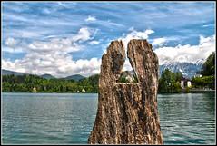Lago di Bled....il triangolo non lo avevo considerato (Maulamb) Tags: lagodibled triangolo tronco