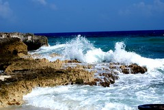 Cozumel Breaking Waves (Andy Arecco) Tags: ocean blue green coral mexico rocks waves waters cozumel seashore breaking crashing